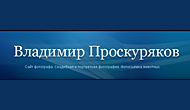 Сайт фотографа Владимира Проскурякова
